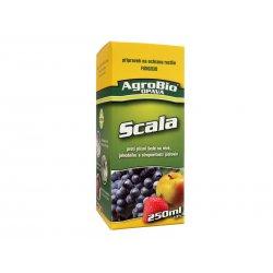 Scala 250ml